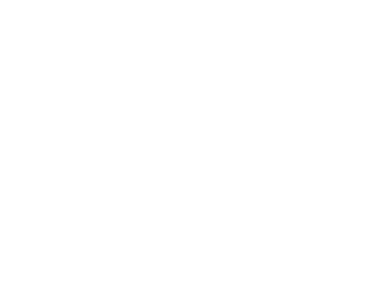 Logo Insight Tech